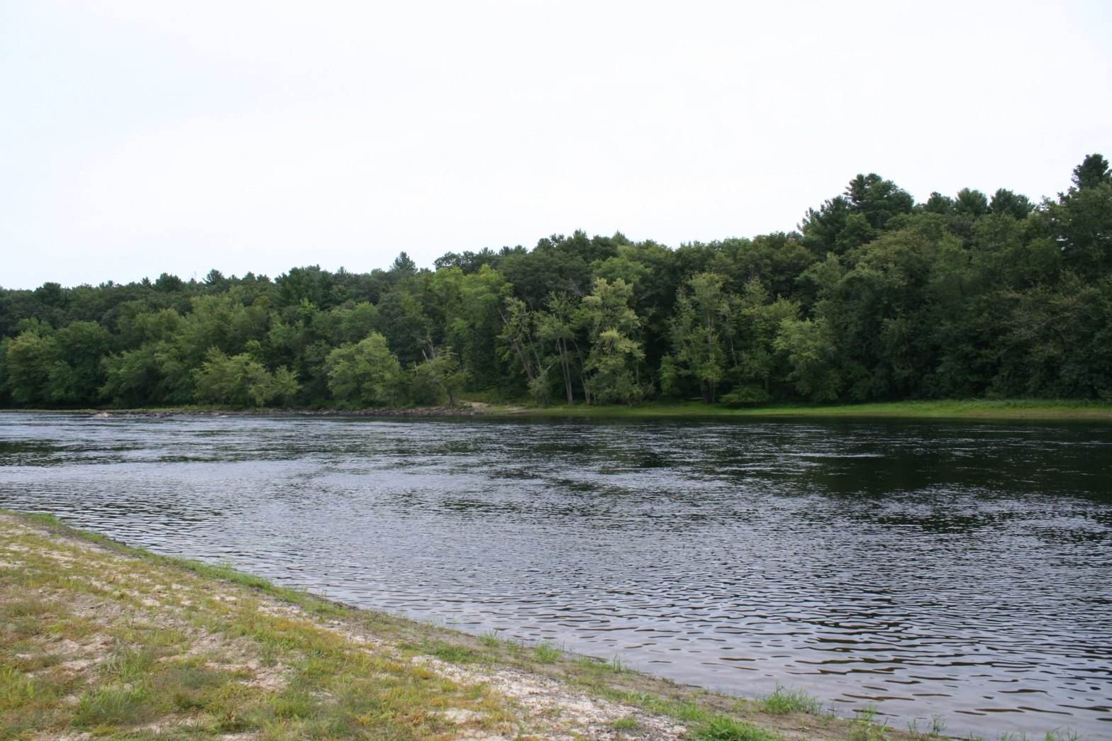 A blue river flowing between two pieces of land. Both river banks have green grass and some sand. One side of the river has many leafy trees growing in a forest.