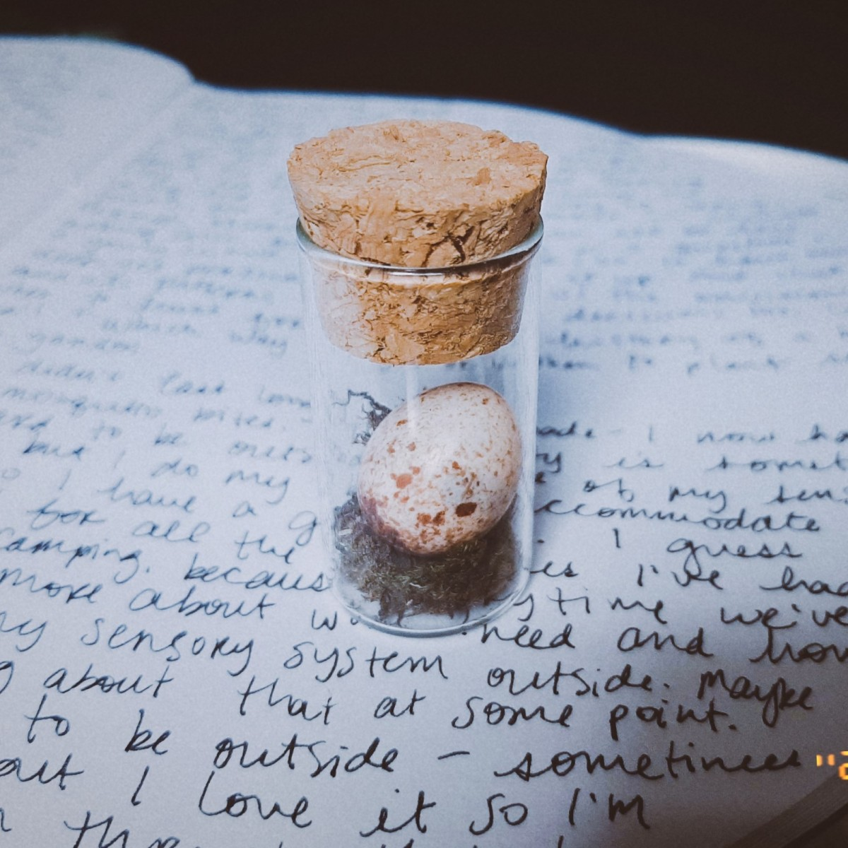 A small glass jar with cork top resting on a notebook with cursive writing. Inside the jar is a small speckled bird egg resting on some moss. The content of the journal is the text in this blog post.